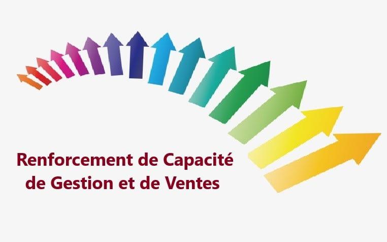 Séminaire de Formation en Renforcement de Capacité de Gestion et de Ventes : Léogane